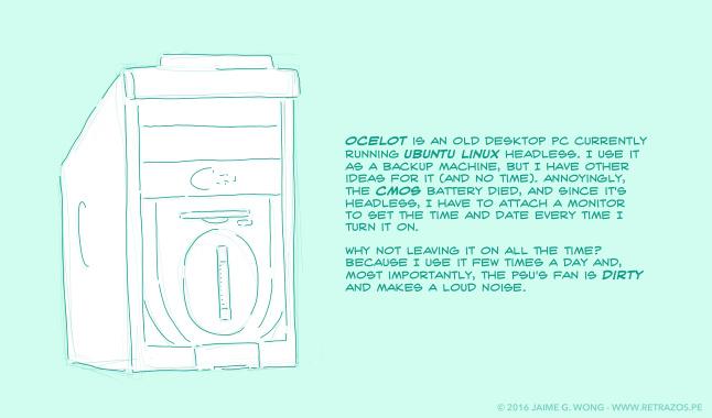 Meet Ocelot, my Ubuntu Linux server