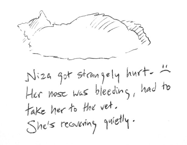 Niza got strangely hurt