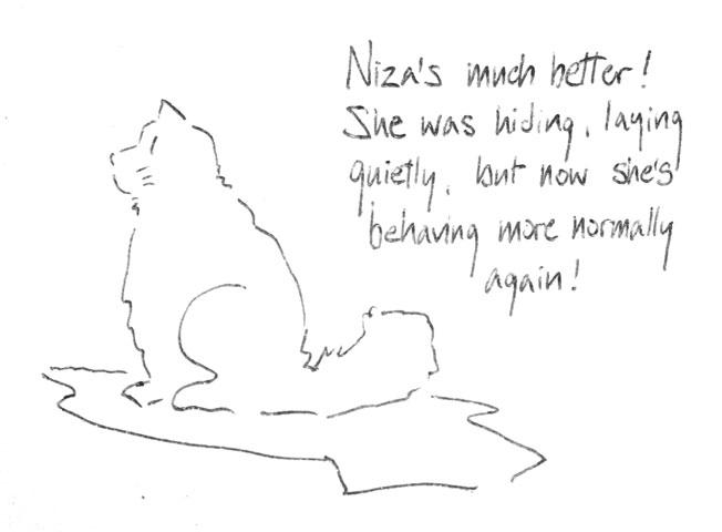 Niza's much better!